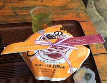 【群馬・横川駅】旅のお供・具だくさんオススメ弁当!釜飯のふたを空ける楽しみも旅の思い出♪