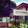 国立科学博物館附属 自然教育園
