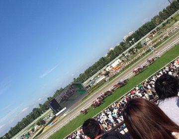 【札幌・桑園・二十四軒】競馬未経験のあなたでも楽しめる!札幌競馬場での遊び方