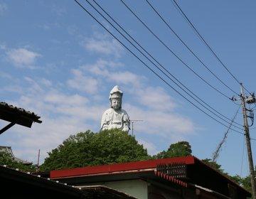 【群馬・高崎】高台より高崎市内を見守ります♪季節のお花も魅力です!高崎白衣大観音