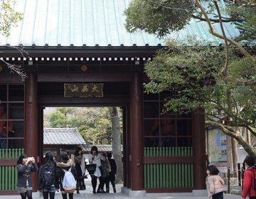 【長谷】鎌倉大仏はなぜ猫背なのか?定番観光スポットで再発見!
