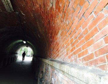 「ねじりまんぽ」って何?京都にある不思議なトンネルに行ってみた。