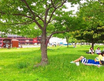 【ピクニックに最適の場所5選】芝生に寝転んでお花に囲まれてゆったりピクニック♪