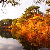 【秋の絶景7選】カメラ好きは絶対に行きたくなる、写真映えがスペシャルな日本の紅葉