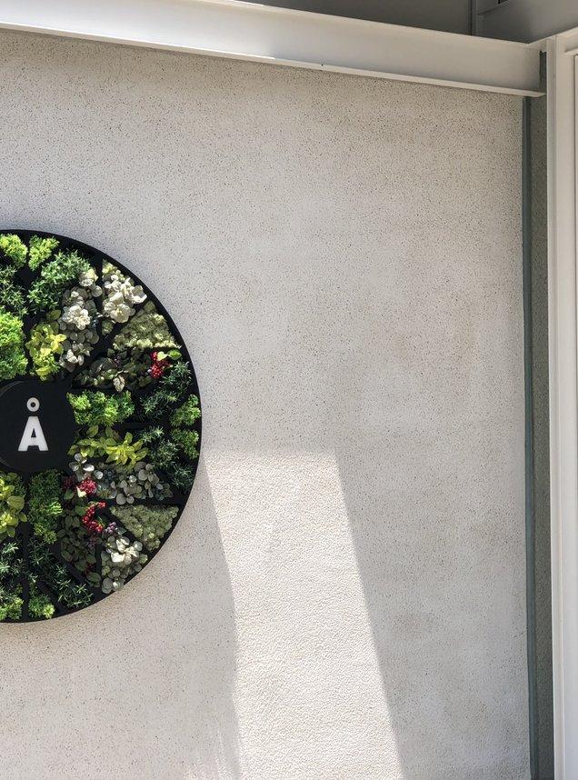 アロハサラダ 原宿店