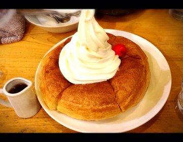 【名古屋飯】東京でも楽しめる名古屋グルメ!無性に食べたくなっちゃうそんな時は、、、♡