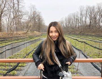 長野・信州旅行!安曇野おすすめ観光『大王わさび農場』特産物食べる・学べる・遊べるスポット