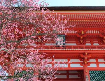 【京都で女子旅】必ず行きたいおすすめ定番スポット!