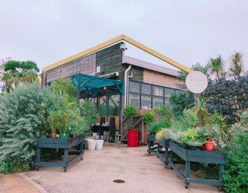 【稲毛】こんな所にオシャレなカフェ!ママ友会にぜひ!お買い物もできるカフェ。子どもにも優しいカフェ。