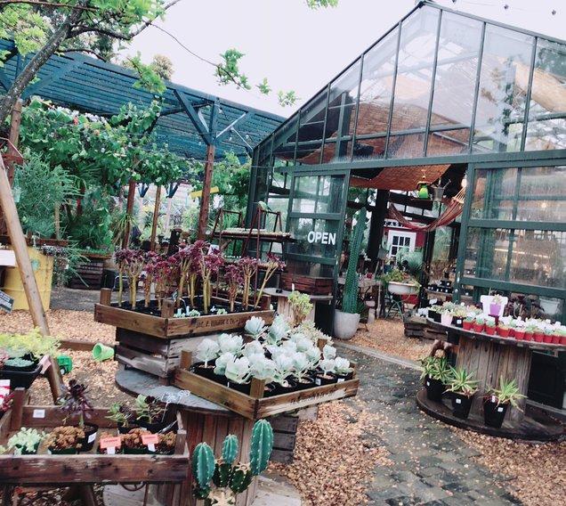 the Farm UNIVERSAL CHIBA