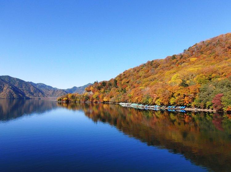 栃木県旅行 人気スポット