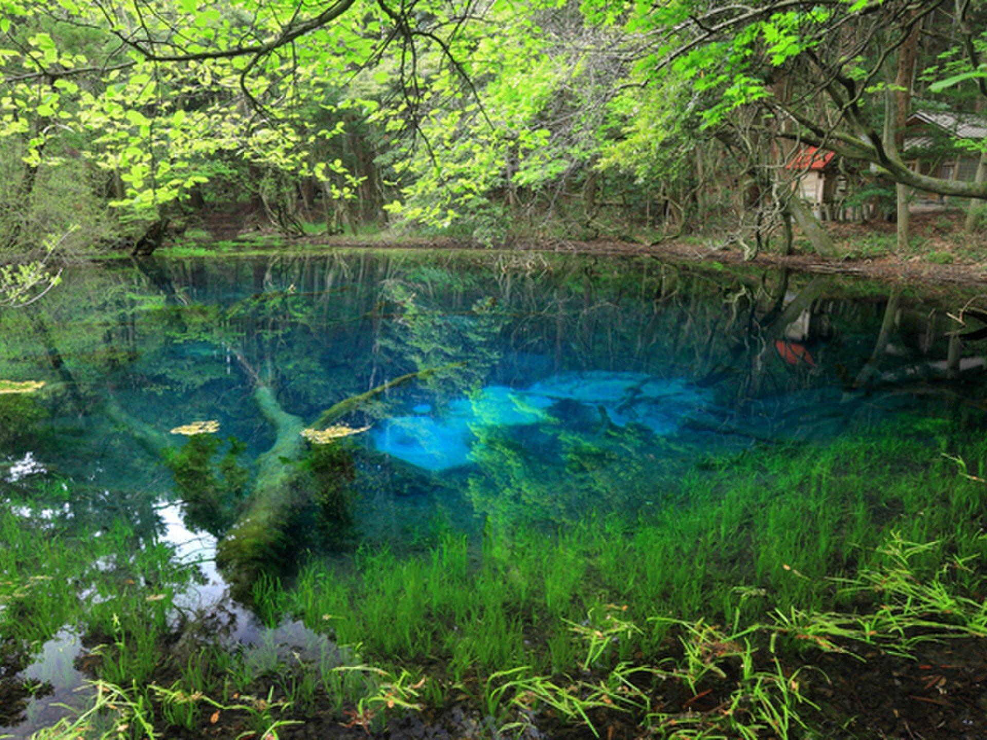 春に行きたい♡山形県でおすすめの観光スポットランキングTOP10!