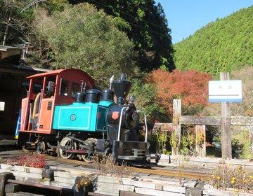 【高知県馬路村】森林鉄道とインクラインに乗って馬路温泉を楽しむプラン♪