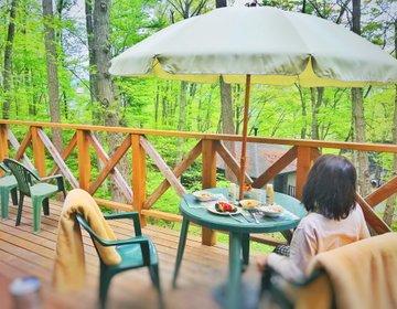 森林を独り占め…別荘で暮らすように泊まる【レンタヴィラ軽井沢・オナーズヒル・貸別荘】