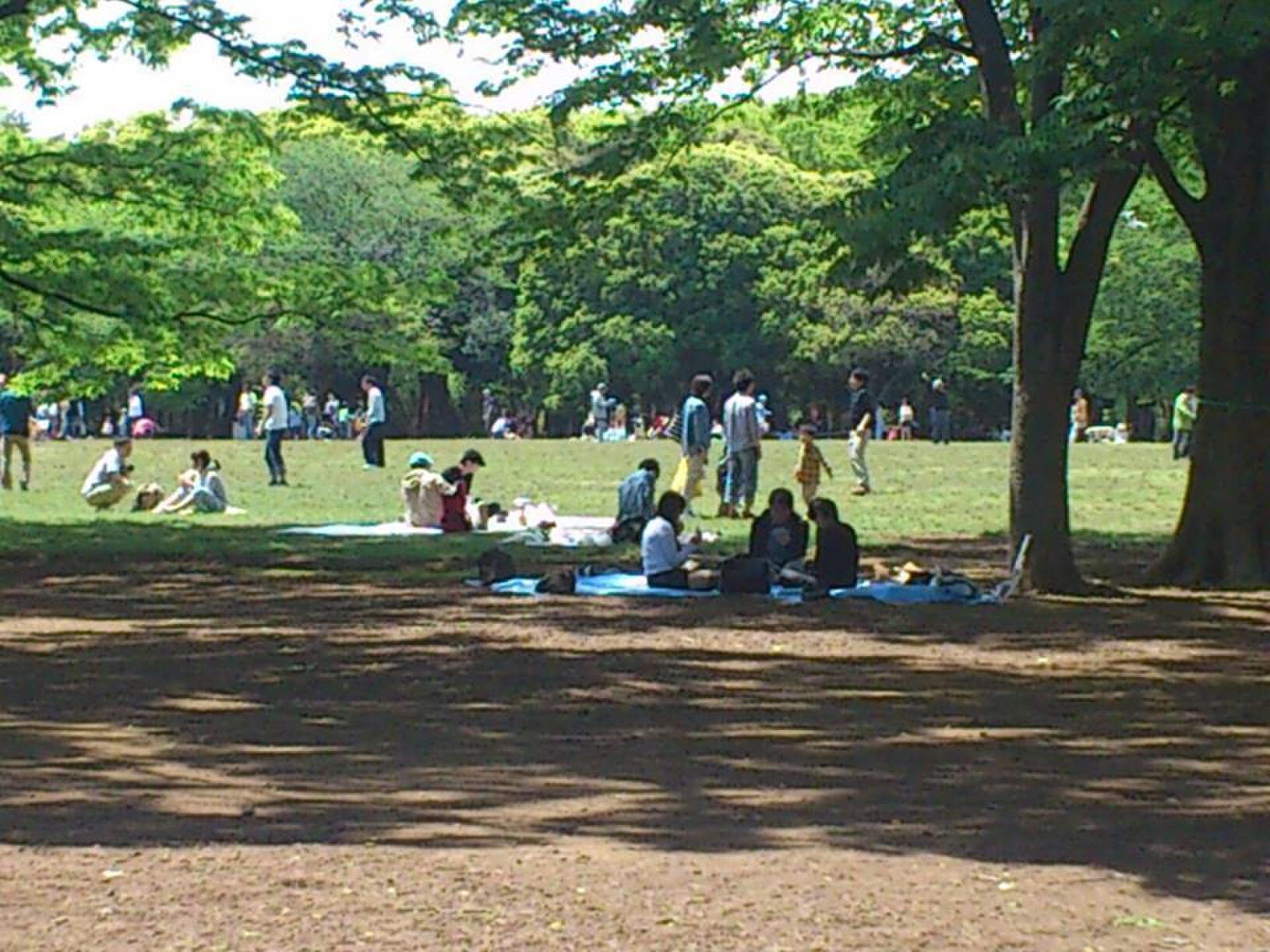 代々木公園ピクニックデート!上級者が教えるのコスパ最高のデートコース