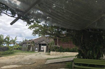 石垣やいま村 あんぱる食堂