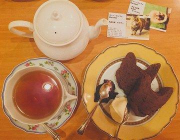 【東京・看板にゃんさま巡り】ネコ王族に会える喫茶店!紅茶&ワイン専門店で癒しのティータイムを。