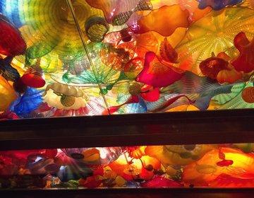 【アメリカで絶対訪れたい美術館】キラキラ好き必見!ワシントン州にあるおすすめガラス美術館2選♪