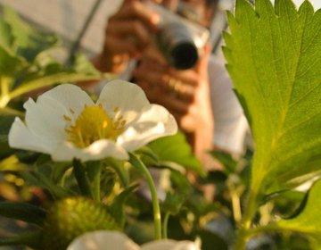 【神奈川県最大の自然島城ヶ島へドライブ】都心から2時間。カメラ片手に記念撮影