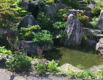 【ご自宅の庭とは思えない!】最近話題になっている釜石のオープンガーデン「陽子の庭」に行ってみた
