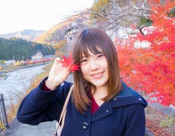 日本一星空が綺麗な長野県阿智村へ!お昼は昼神温泉でまったり観光してみた♡