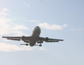 日本一楽しい空港・新千歳空港を遊び尽くす!【ドラえもん、シュタイフ、朝市食堂、ラーメン道場、函太郎】