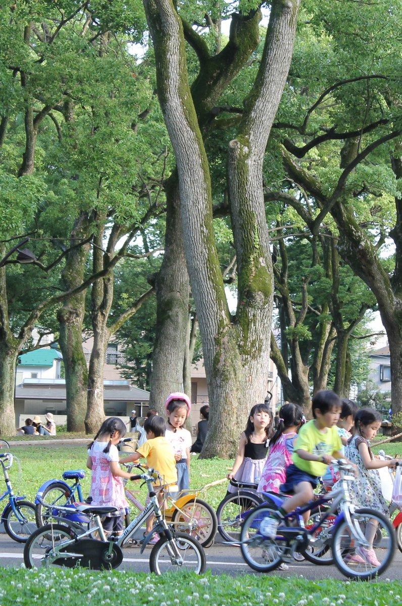 东京大都会驹泽奥林匹克公园