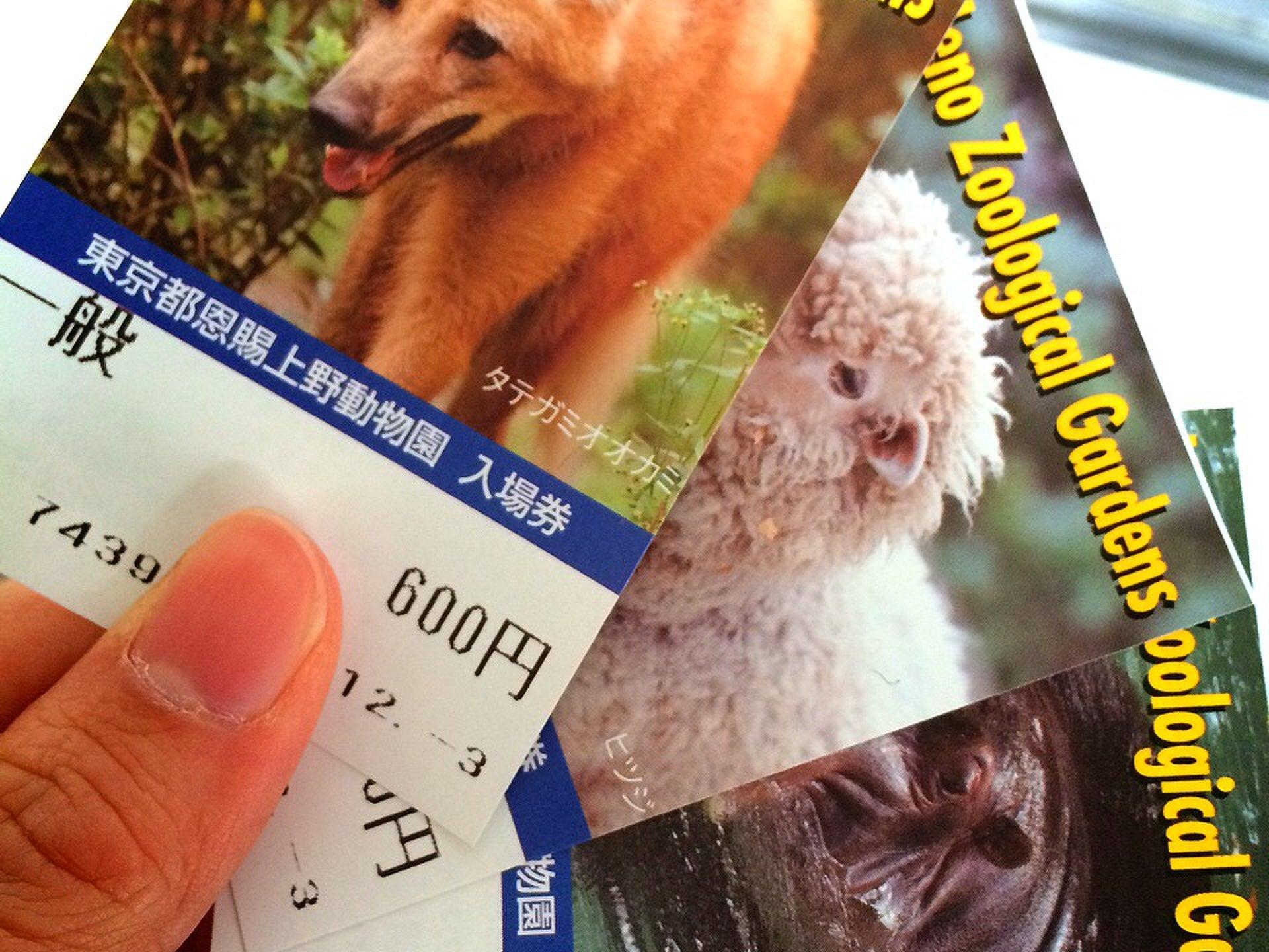 上野観光と言ったらココ!上野駅周辺で行くべき定番のおすすめスポットまとめ