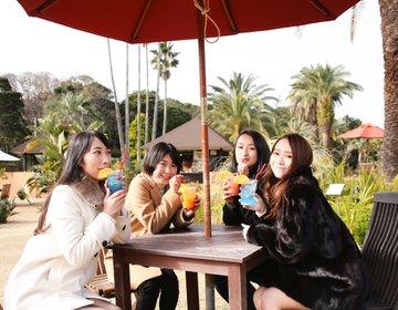 【東京都内から電車で日帰り女子旅】初島でアスレチック、海鮮丼、温泉を堪能するリゾート女子会