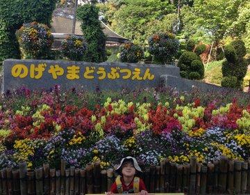 横浜★入園無料野毛山動物園★すぐ近くのオススメの公園&図書館&カフェ予算1人500円★