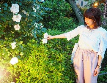 【阿佐ヶ谷のんびりデート♪】駅周辺を網羅!低価格で満足できちゃう完璧デート!