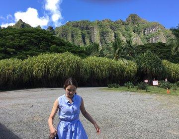 ハワイ旅~オアフ島のマカデミアナッツ工場でお買い物