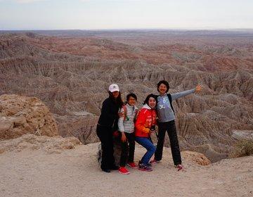 カリフォルニアの砂漠の大絶景が見れるスポット。アウトドア女子旅 ☆アンザボレゴ砂漠州立公園
