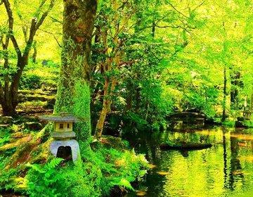 【岐阜観光といえば】歴史の足跡がいっぱいの岐阜公園へ行こう!