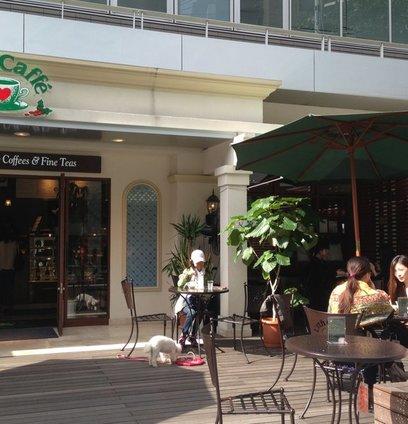 Urth Caffe 代官山店