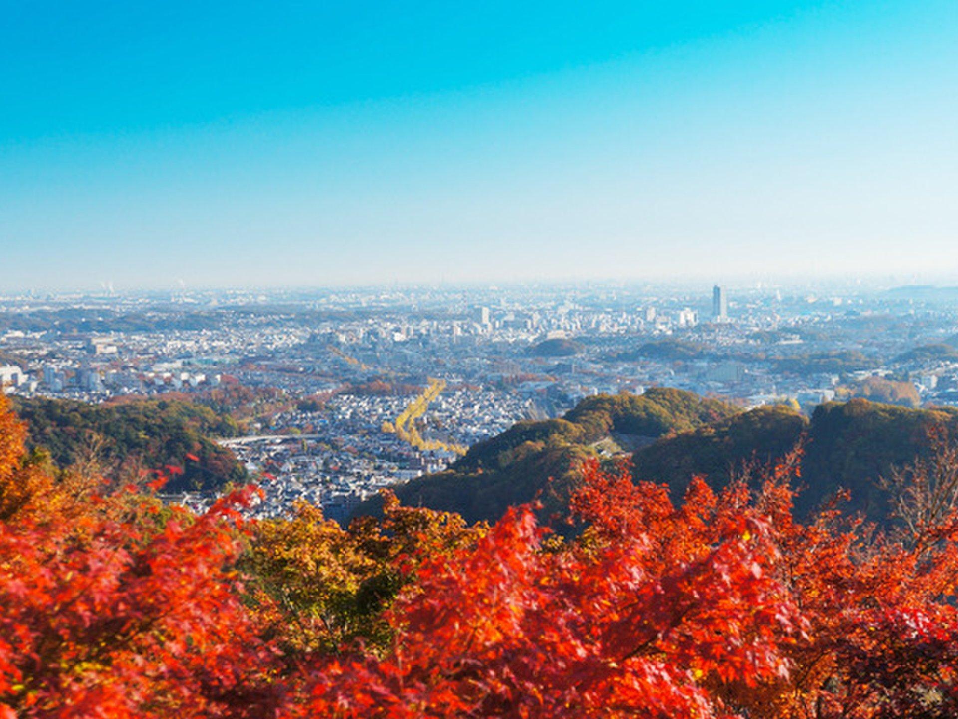 高尾山はケーブルカーを使えばラクラク♪絶景と絶品そばを楽しむ初心者ハイキングをご紹介!