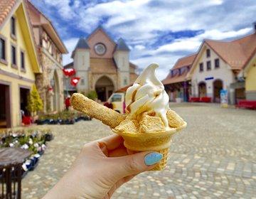【一度は食べたい本家の信玄餅ソフトクリーム】山梨県でフォトジェニックなスイーツタイムを。