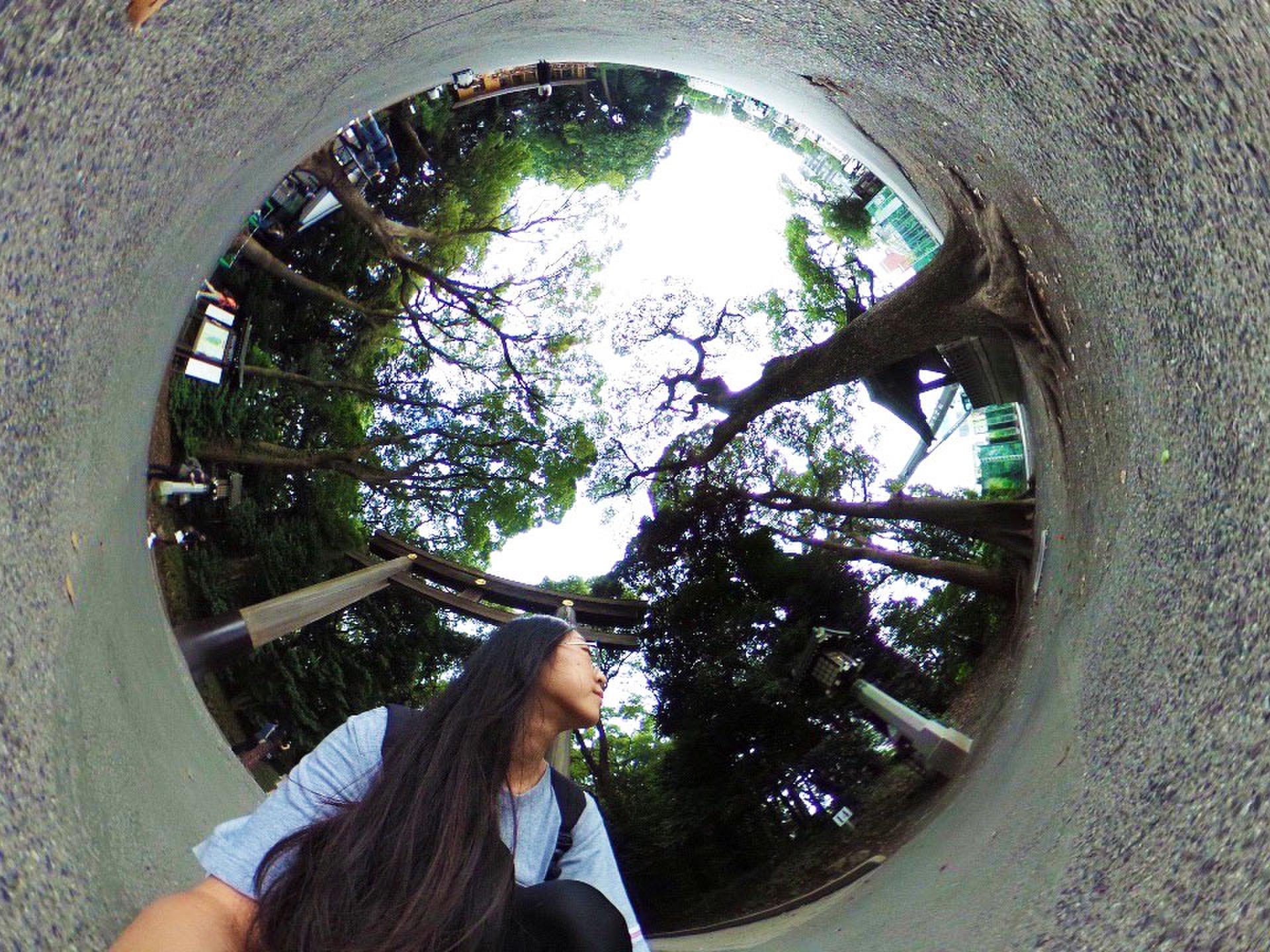 東京の歴史的観光地が今アツい!立ち寄りたくなる周辺のおすすめスポットもご紹介
