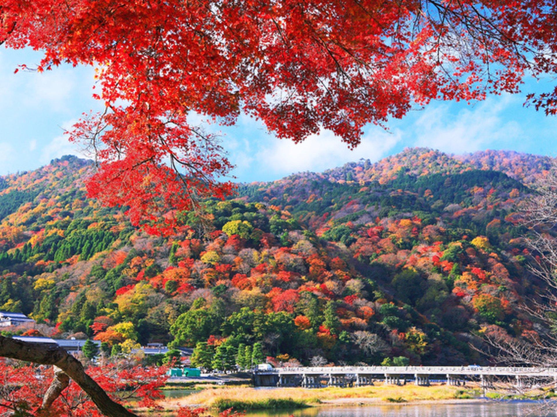 今が見頃!京都嵐山でおすすめしたい人気の紅葉スポット10選