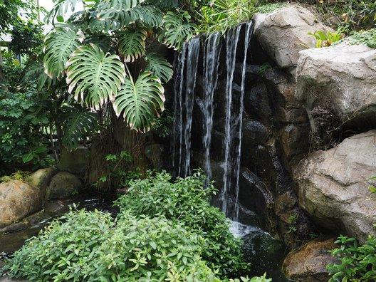 強羅公園ブーゲンビレア館