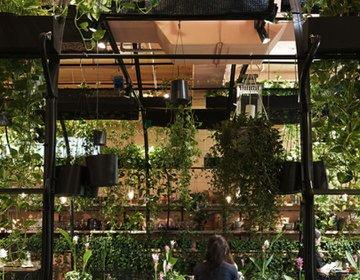 [表参道CAFE] 花屋さんに迷い込んだ先には、花と緑に包まれた異空間が待っていた✿