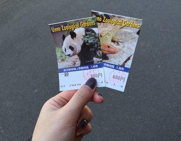 【上野×デート】動物園デートの後はがっつりだけどおしゃれなディナーを☆