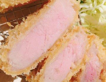 牛カツの次は白カツ!オープンしたての「ねぎポ」で味わう絶品の豚カツを調査