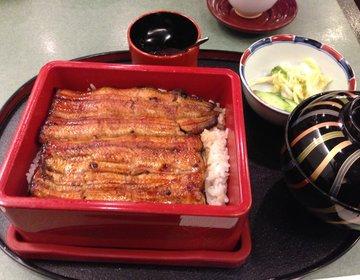 【田舎者必見】山手線を半周!東京で食べたいおすすめグルメと絶対行くべき観光スポット特集