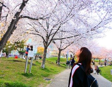梅田から7分!最寄り駅から徒歩1分!大阪でお花見を楽しむなら駅近の扇町公園で決まり!