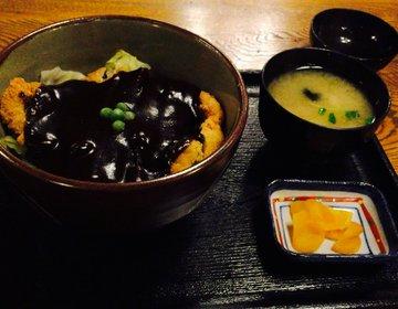 【岡山で絶対食べたいご当地グルメ】ドミグラスソースカツ丼を食べるなら人気ナンバーワンの味司野村へ!