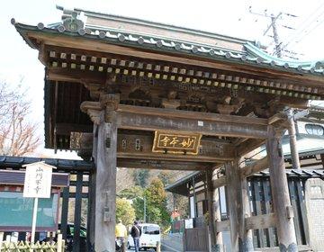 【神奈川・鎌倉】日蓮宗最古の寺院!春には満開の桜とカイドウがお出迎え♪「妙本寺」