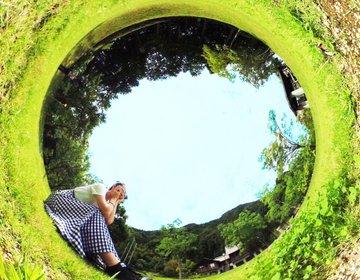 こんな楽しくでタダでいいんですか…?こうして遊べ!青葉山ハーバルビレッジ in 福井