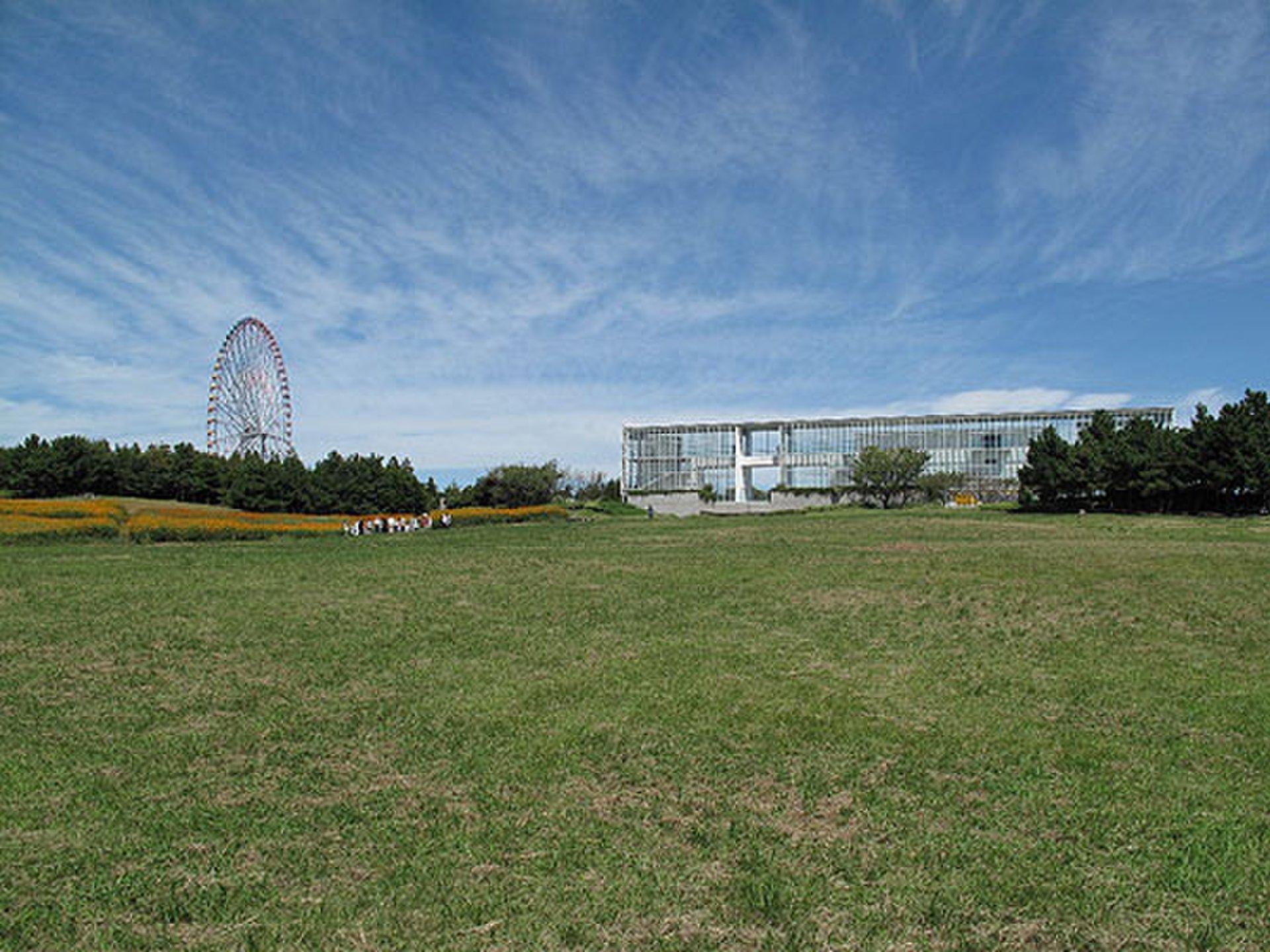 【晴れた日に公園で過ごす1日】葛西臨界公園&お台場海浜公園で自然を満喫!