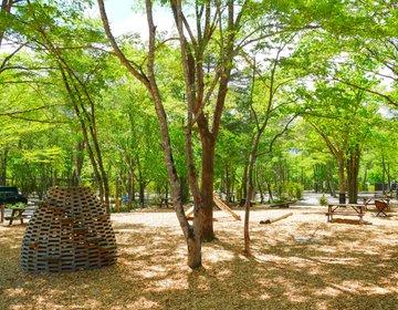 アウトドアの本質!軽井沢を五感で体験できるリゾートキャンプ【ライジング・フィールド】